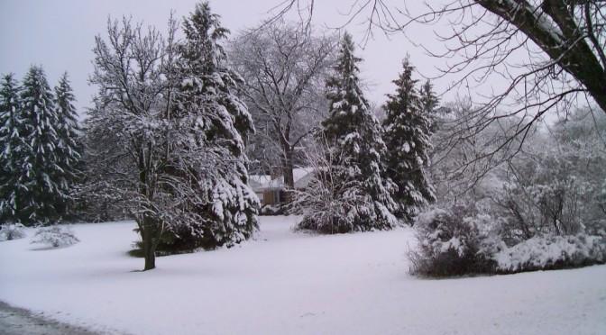 April Snows bring….