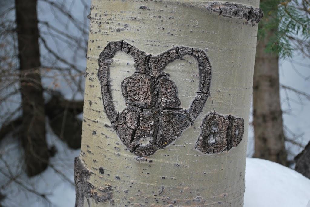 A Poem for St  Valentine's Day: Derek Walcott's