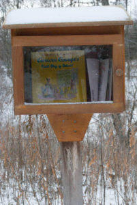 little library in winter